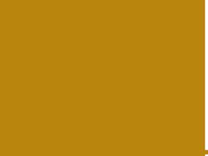 logo-bu2